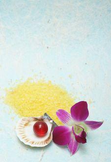 Free Aromatherapy Stock Image - 5046641