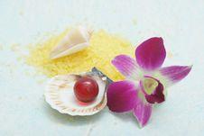 Free Aromatherapy Royalty Free Stock Photos - 5047688