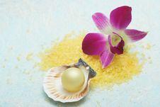 Free Aromatherapy Stock Image - 5048231