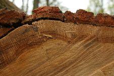 Free Wood Stock Photos - 5048693