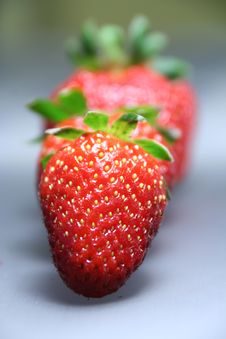 Free Strawberry Stock Image - 5048711