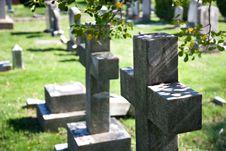 Free Graveyard Scene. Stock Photo - 5049810