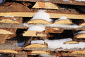 Free Woodpile Stock Image - 50476051