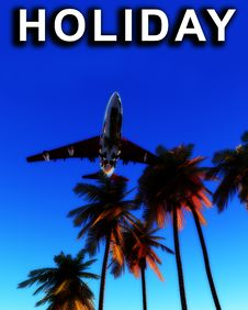 Free Holiday Plane And Wild Palms 7 Royalty Free Stock Images - 5050439