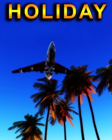 Free Holiday Plane And Wild Palms 8 Stock Photography - 5050442