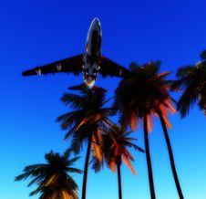 Free Plane And Wild Palms 5 Royalty Free Stock Photo - 5050535