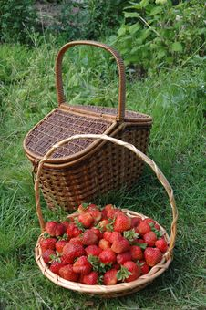 Free Basket Of Strawberries Stock Photos - 5051723