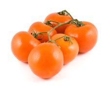 Free Fresh Tomatoes Stock Image - 5055081