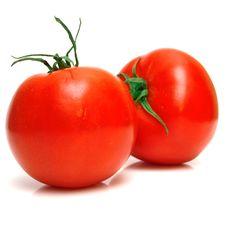 Free Tomatoes Stock Image - 5055741