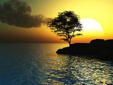 Free Old Tree Royalty Free Stock Image - 5057716