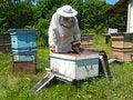 Free Beekeeper 24 Royalty Free Stock Photo - 5062085