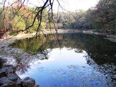 Free Quiet Lake Stock Image - 5063701