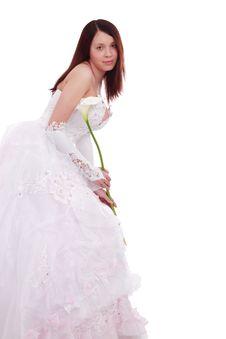 Free Dress Bride Royalty Free Stock Photo - 5065965