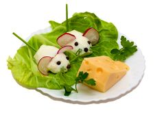 Free Salad - Two Mouse And Cheese Stock Photography - 5067012