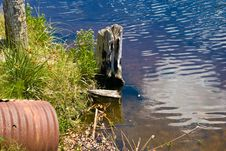 Free Stump & Culvert And Canal S Edge. Royalty Free Stock Images - 5067019