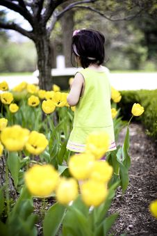 Free Girl In Flower Garden9 Royalty Free Stock Image - 5067656