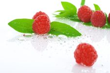 Free Raspberry Stock Images - 5068244