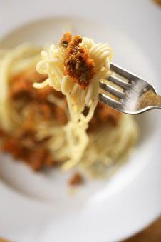 Free Spaghetti Bolognese Royalty Free Stock Photos - 5068888