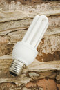 Free Energy Saver Lamp Royalty Free Stock Photos - 5071878