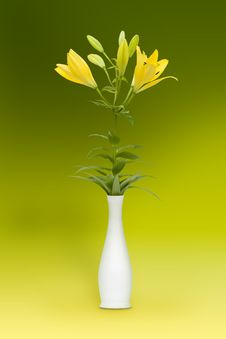 Lily - Floral Motive Royalty Free Stock Photos