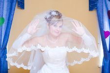 Free Funny Bride Royalty Free Stock Images - 5071509