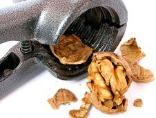 Free Nut-cracker Stock Image - 5072051