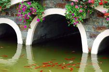 Free Koi Under Arch Bridge Royalty Free Stock Images - 5072769
