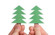 Free Two Christmas Trees Stock Photo - 5072960