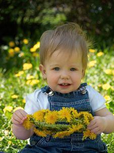 Free Kid With Dandelions Stock Photos - 5075763