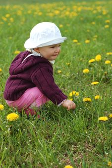Free Baby Girl Outdoor Stock Photography - 5078212