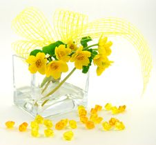 Free Spring Decoration Stock Photography - 5078222