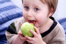 Free Apple Royalty Free Stock Photos - 5078518