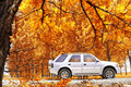 Free Rural Travel In Autumn Stock Image - 5080761