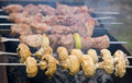 Free Shish Kebab Stock Photos - 5085013