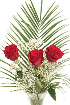 Free Bouquet From Three Beautiful Red Roses Royalty Free Stock Photo - 5080355