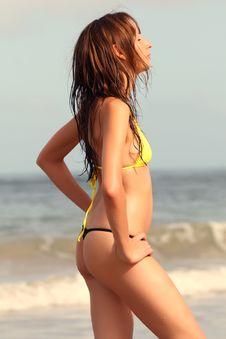 Free Sunbathing Woman Stock Photography - 5081082
