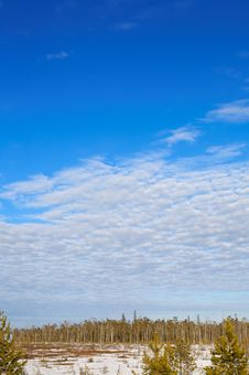 Free Karelian Landscape. Stock Image - 5081311
