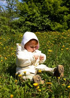 Free Girl Sits On A Grass Royalty Free Stock Photo - 5081815
