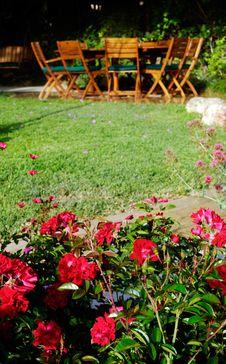 Free Garden Stock Image - 5081971