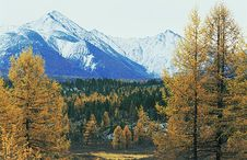 Autumnal Landscape In The North Mountain. Royalty Free Stock Photography