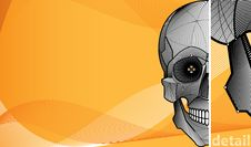 Free Background With Skull Royalty Free Stock Images - 5083679