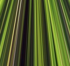 Free Abstract Linear Color Background. Royalty Free Stock Image - 5084016