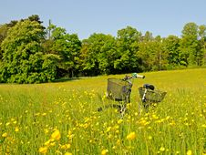Free Bicycle In The High Grass Stock Images - 5084754