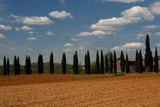 Free Tuscan Landscape Royalty Free Stock Image - 5085196