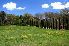 Free Tuscan Spring Landscape Stock Photos - 5085263