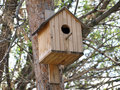 Free Birdhouse Royalty Free Stock Photos - 5099058