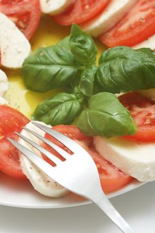 Free Fresh Mozzarella Stock Photo - 5091400