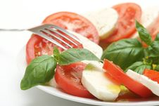 Free Fresh Mozzarella Stock Images - 5091844