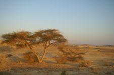 Free Desert Landscape Royalty Free Stock Image - 5092106