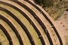 Free Inca Ruins Royalty Free Stock Photos - 5092148